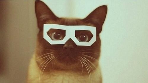 очки ray ban купить в киеве