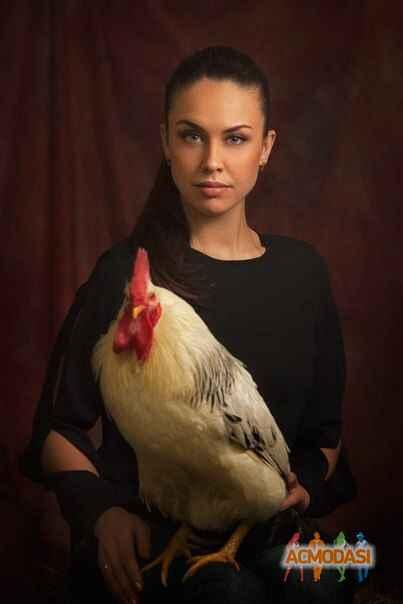 Арина горшкова заработать моделью онлайн в подольск